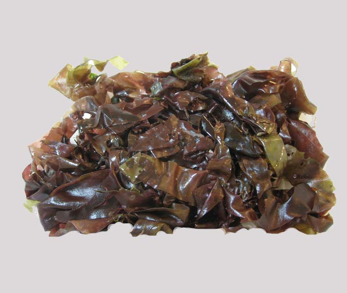 how to say seaweed in french